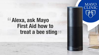 mayo bee sting image.png